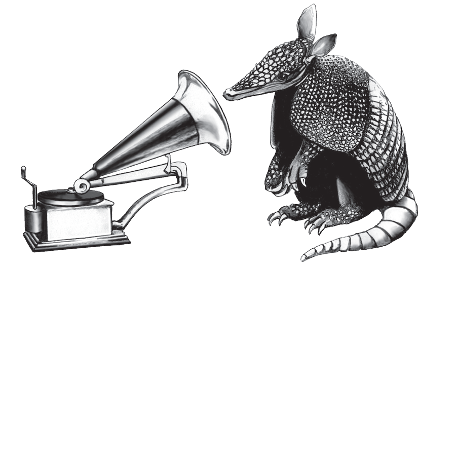 row a media